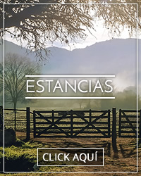Estancias