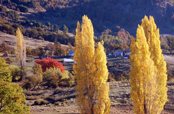 Las poblaciones rurales en otoño son visitadas por turistas curiosos.