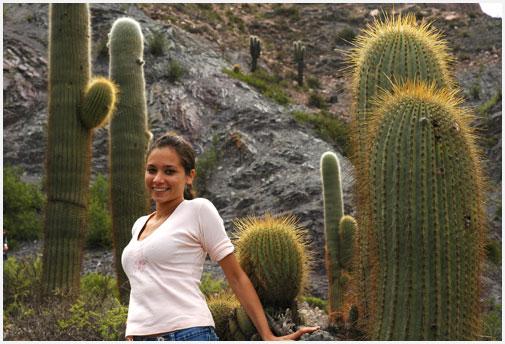 Dime con que cactus andas y te dir qui n eres for Cactus argentina