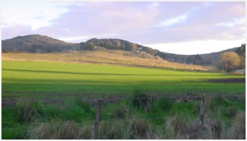 Los paisajes son realmente bellos, e invitan a cabalgar.