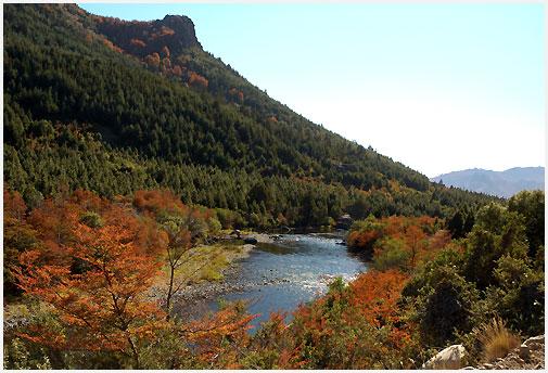 El otoño ya se instaló definitivamente en nuestra Patagonia.