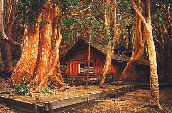 Una casita de cuentos en villa la angostura - Casitas del bosque ...