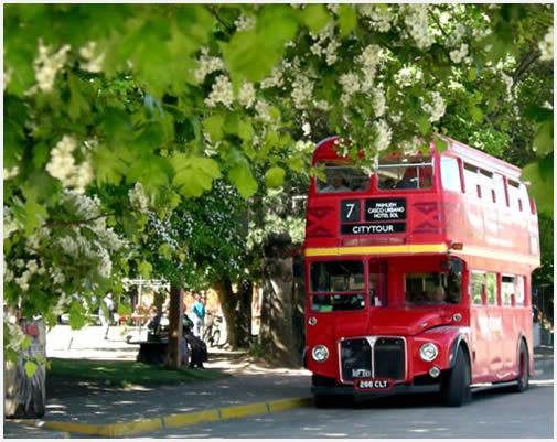 red-bus-city-tour