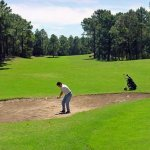 Playing at Golf Club Caril�