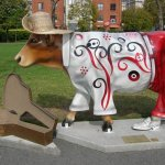 Cows in the city