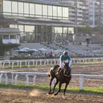 Argentinian horse race track at Palermo