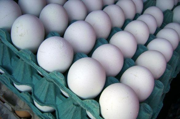 Huevos caseros - Fotos de Mercedes - Archivo wa-7522