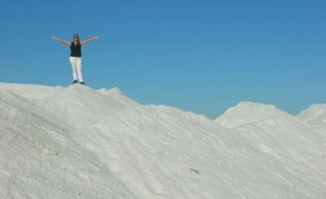 Bebedero Salt Deposit, the White Desert