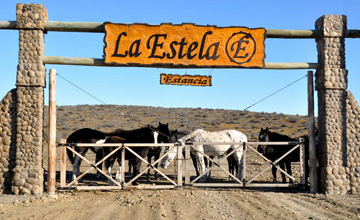 La Estela Ranch, for All Tastes