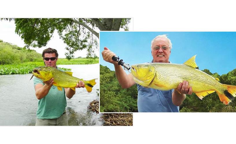 Fishing the paran river for Parana the fish