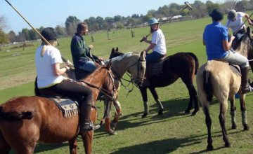 Come and Play Polo for a Day
