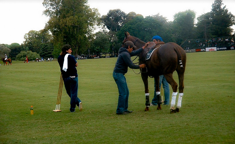 The Best Polo in the World is Argentinian