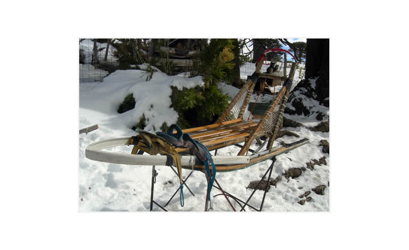 The wooden cart equipped with skis
