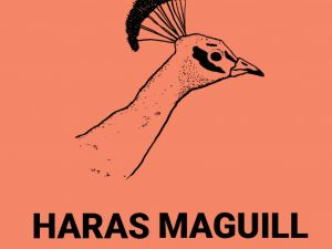 Haras Maguill