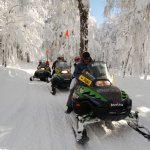 Motos en el bosque nevado