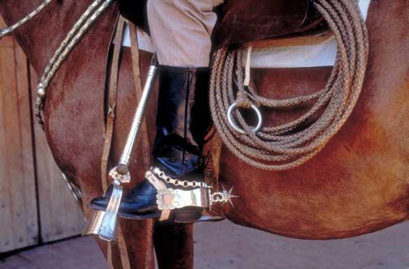Estribo de gala - Fotos de Santa Rosa - Archivo wa-3190